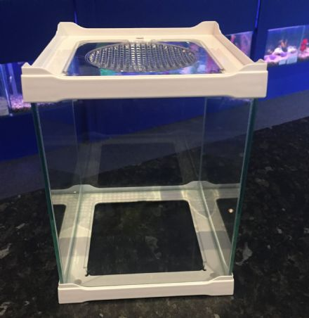 Display & Breeding Small Stack-able Glass Tank 16 x 16 x 16cm